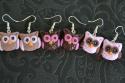 Petites Chouettes